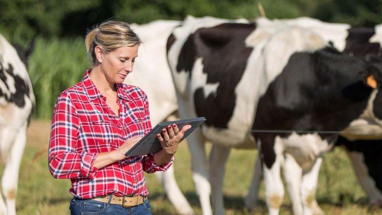 Exploring the online regulation information needs of NZ farmers